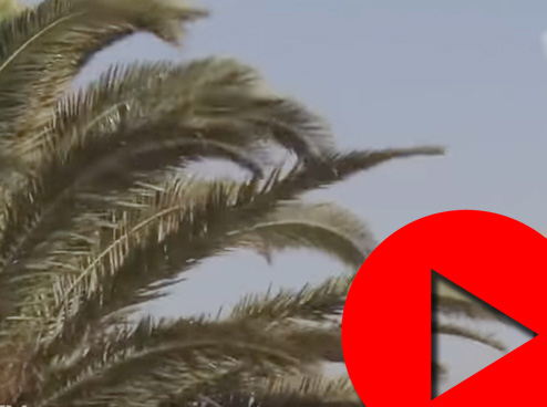 أمطار ورياح قوية بالمغرب