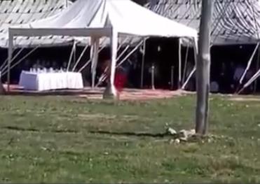 استقبال سياح في طنجة بالرقص الشرقي