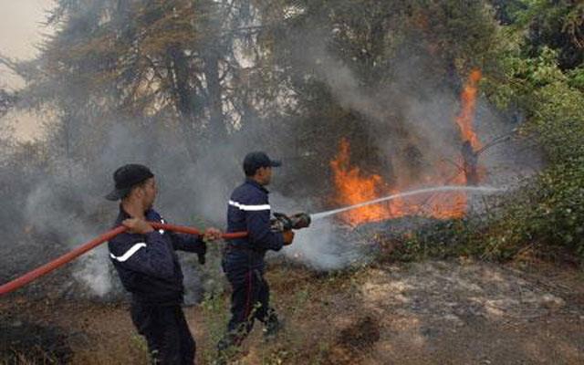 حريق بغابة المنار