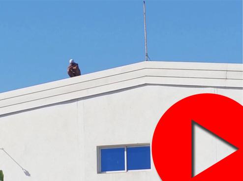 عامل يهدد بالانتحار بعد طرده من العمل في طنجة